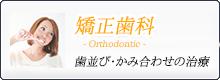 歯並び・かみ合わせの治療